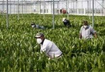 Spari contro nigeriano al lavoro