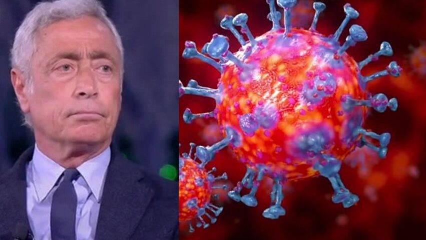 Le Foche e il c oronavirus
