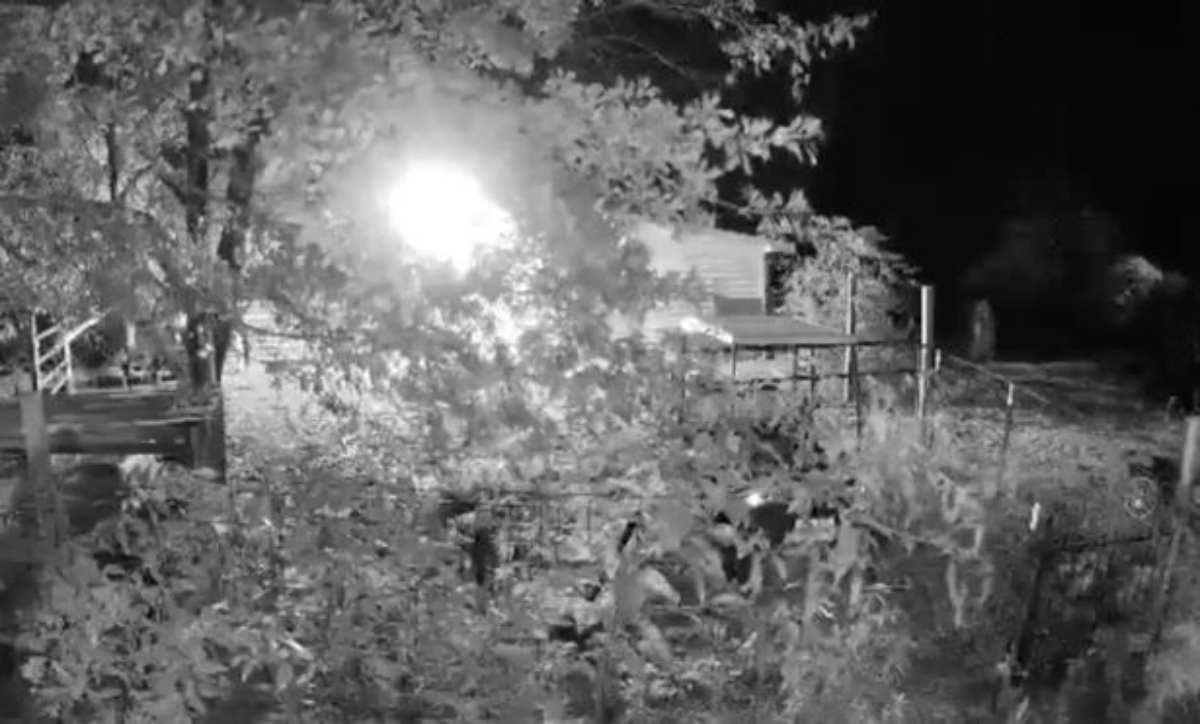 """Donna terrorizzata pubblica il video che immortala il """"fantasma"""" che gira intorno alla casa"""
