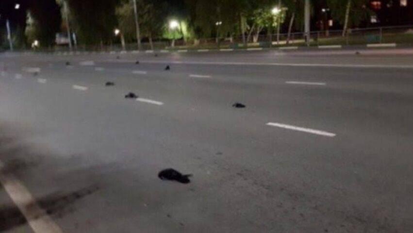 misterioso episodio sulle strade russe