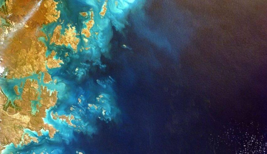 La scoperta nella barriera corallina